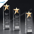 Rising Star Crystal Awards Trophies Supplier For Music