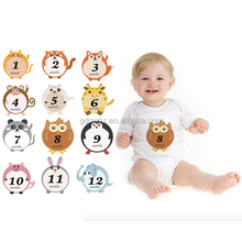 Amazon hot selling lovely animal baby milestone sticker for photo shooting