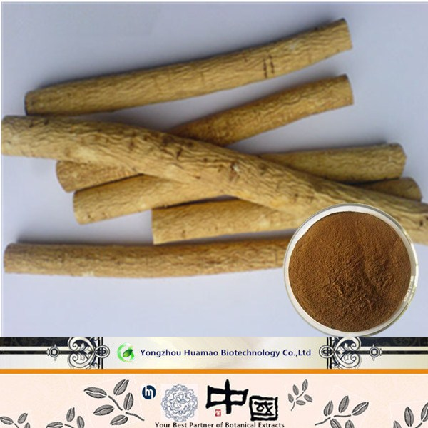 China wholesale Top Quality Astragalus root Extract/Cycloastragenol 98%/Astragaloside IV 98% HPLC