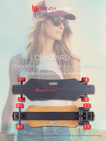 2016 New arrival!Bamboo Fiber Glass material 4wheels electric skateboard 2*1800w dural motor for adult