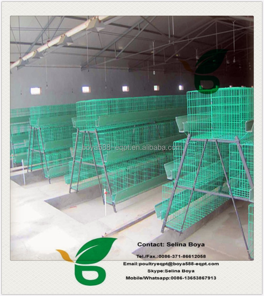A frame stock chicken cage plans for Kenya Nigerian farm/galvanized and plastic coated chicken laying