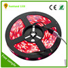 alibaba china supplier best factory price waterproof rgb 5050 led strip 12v 30led/meter white led strip