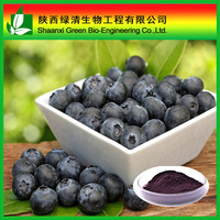 Free sample bilberry fruits extract anthocyanidins 25% Proanthocyanidins