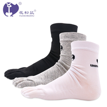 factory wholesales cotton five toe women socks five soft and cute diabetic toe socks