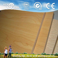 8mm Laminated Plywood/Construction Materials