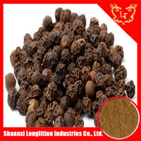 China manufacturer 98% piperine black pepper extract powder with factory price