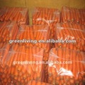Carrot price 2014 in china