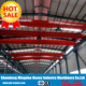 Hot Sale! Lower Price Workshop Used Electric Hoist Overhead Crane