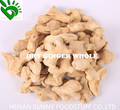 Exported Quality Dried Ginger Whole
