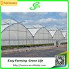 Mutil Span Plastic House For Agriculture