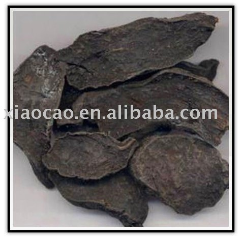 Polygonum multiflorum Thunb Extract(Fo Ti Extract)