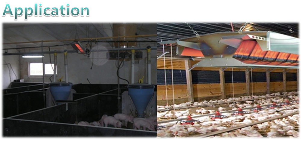 Industrial price poultry farm heating equipment system, gas infrared farm heater