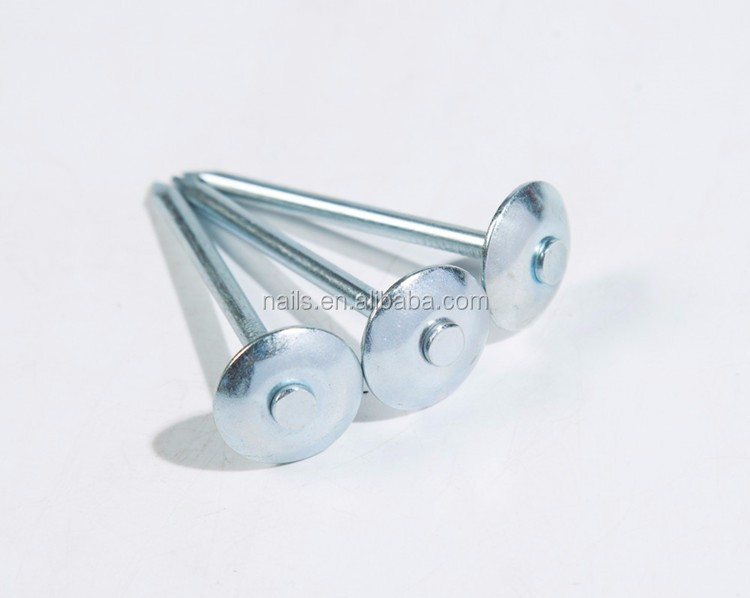 New product galvanized flat head roofing nails