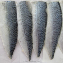 Pacific Mackerel cuts without head and tail