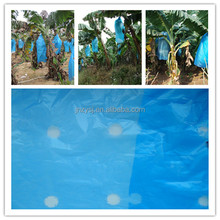 Banana Bunch Covers masterbatch fo anti insect/birds/ pest