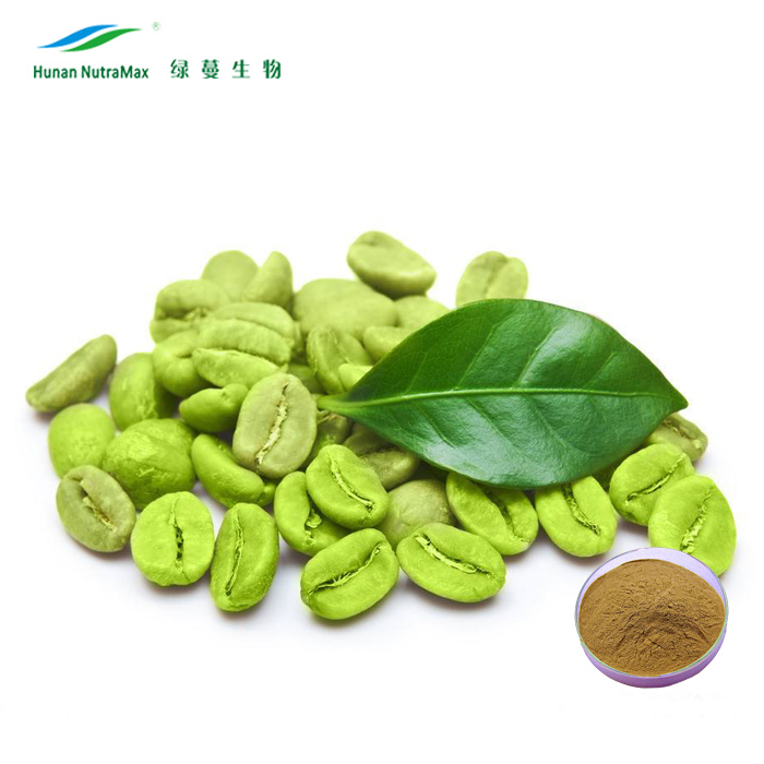 Manufacturer Supply Plant Herbal Green Coffee Extract 50% Chlorogenic Acids by HPLC