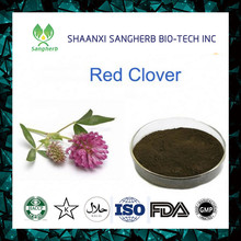 Natrual anticancer raw material Isoflavones Red Clover Extract/Red Clover P.E.