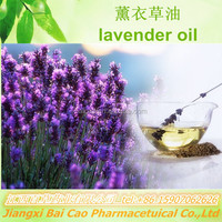 100%natural pure organic essential oil Lavender oil for massage