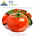High quality Tomato Extract , Lycopene , lycoypene
