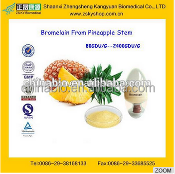 GMP Supplier high hquality Bromelain 600~2400GDU/G from Pineapple Stem