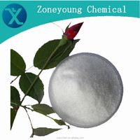 Pharmaceutical Dosage Nature Powder Beta cyclodextrin with professional manufacturer