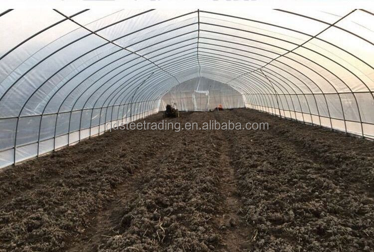agricultrue tunnel green hosue
