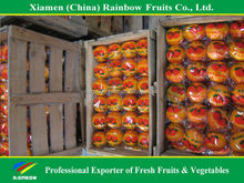 names all fruits of fresh mandarin orange