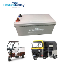 deep cycle 12v 200ah lithium ion battery for electric bike,rickshaw