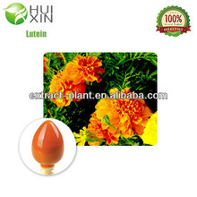 Natural Marigold P.E/ Marigold extract powder