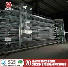Battery cages for layers for farms in ghana with poultry manure removal system