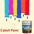 Caboli China factory directly sell best exterior wall paint exterior emulsion paint