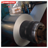 Hot Dipped Galvanized Steel Coil/Sheet (ISO9001:2008; BV; SGS) in competitive price mainly used for roofing sheet