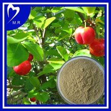 Natural antioxidant for Acerola cherry fruit extract powder