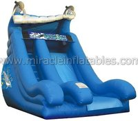 Dolphin inflatable water slides,inflatable water park games M4040