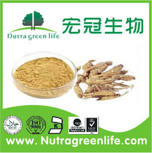 Angelica Sinensis Extract Root Dong Quai Extract