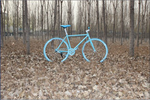 high-carbon steel 700C Single Speed Fixed Gear Bicycle/mountain bike from china