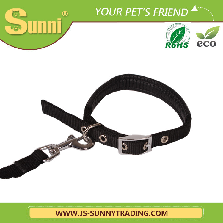 Nylon webbing paracord dog collar and leash