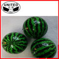 wholesale watermelon PU foam ball as giveaway gift