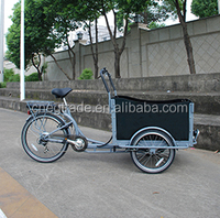 Electric bicycle motor family cargobikes electric cargo bike/cargobike/bakfiets UB9019E trikes