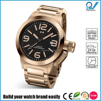 Build your watch brand easily stainless steel oem watch brand gold big case japan or swis movement