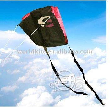 Children's Mini Kite