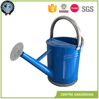 High quality houston International Steel garden flower Watering Can