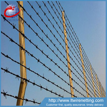 Ultra-low prices Stainless Steel Barbed Wire Fencing , pvc coated Strand Double Twist Barbed Wire