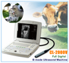 CL-2000V Laptop VET veterinary ultrasound Machine Scanner for small / large Animals,sheep,goat,cow,