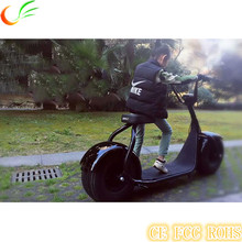 High Power 1000w Electric Battery Powered Motorcycle haley Electric Motorcycle 1000w For Sale