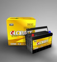 Lead Acid Maintenance Free Automotive Battery