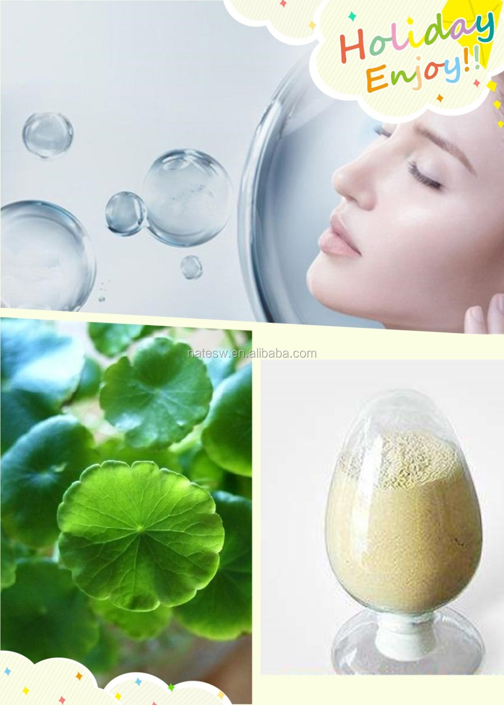 Repair skin natural Gotu Kola Extract 80% Titrated Extract of Centella Asiatica TECA
