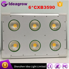 IDEA LIGHT factory Full spectrum best selling 500W mcob led grow light