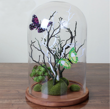 Customized Crafts Gifts Glass Dome