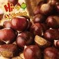 Organic Chinese Dried Chestnuts for sale